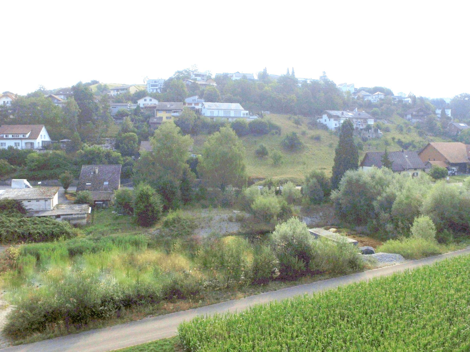 Bauland in Egliswil